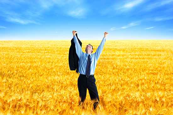 Free successful businessman in the field under blue sky