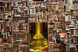 books-2885315__340