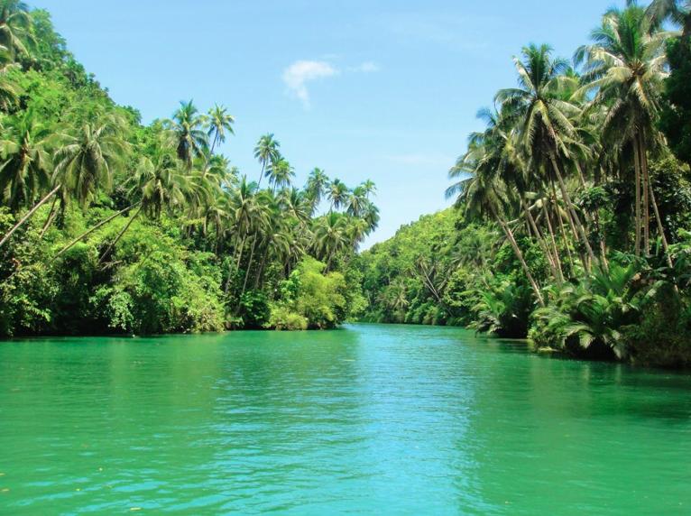 Loboc_river