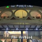 セブのホテル③ The Orchard Hotelに泊まってみた!